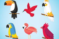 6款彩色卡通鸟类矢量素材