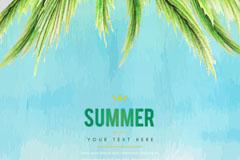 彩绘夏季椰子树叶矢量素材