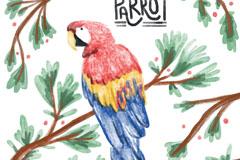 水彩绘树枝上的金刚鹦鹉矢量素材