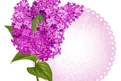 紫色丁香花卡片矢量素材