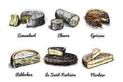 6款复古彩绘法国奶酪矢量素材