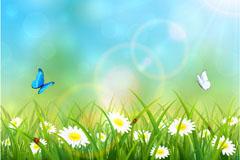 美丽雏菊花丛和蝴蝶瓢虫矢量素材