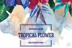 水彩绘热带花卉背景矢量素材
