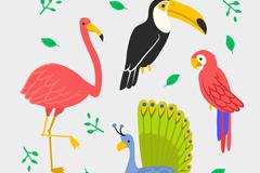 4款彩色火烈鸟鹦鹉等鸟类设计矢量素材