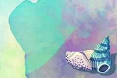 水彩绘海螺背景矢量素材