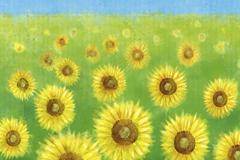水彩绘向日葵花丛矢量素材