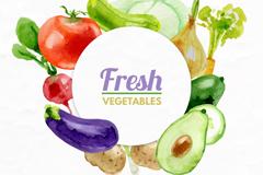 水彩绘多种新鲜蔬菜矢量素材