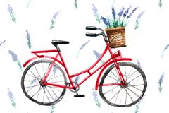 水彩绘复古单车和薰衣草矢量图