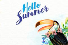 彩绘夏季犀鸟和花卉矢量素材