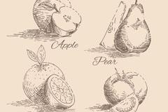 4款手绘水果与蔬菜切片设计矢量素材