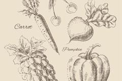 5款逼真手绘水果和蔬菜矢量图