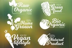 6款创意蔬菜素食标志矢量素材
