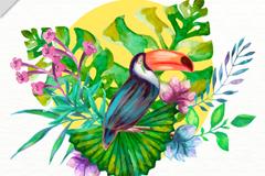 彩色热带植物和犀鸟矢量素材