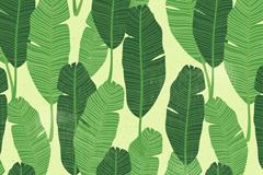 绿色羽毛状树叶无缝背景矢量图