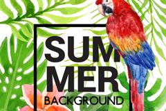 夏季热带鹦鹉和花草矢量素材