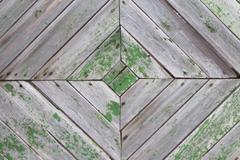 长绿色苔藓的木板背景矢量素材