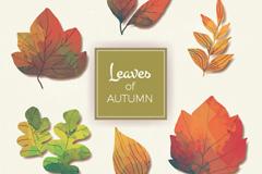 6款彩绘秋季树叶矢量素材