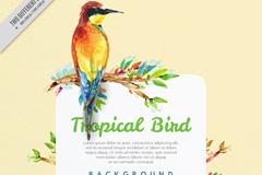 彩绘树枝上的热带鸟矢量图