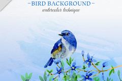 水彩绘蓝色鸟和花卉矢量图