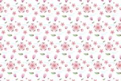 彩绘樱花花朵无缝背景矢量图