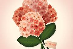 美丽绣球花花束矢量素材