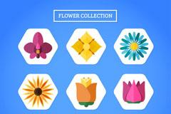 9款扁平化花朵图标矢量素材