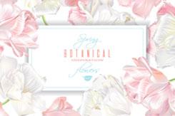 粉色郁金香装饰卡片矢量素材