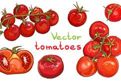 红色手绘西红柿矢量素材