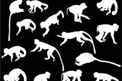 15款白色猴子剪影矢量素材