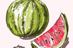 彩绘美味西瓜矢量素材