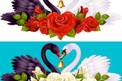 2组美丽天鹅和玫瑰花矢量素材