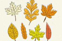 7款彩绘秋季叶子矢量素材