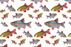 彩绘大小鱼类无缝背景矢量图