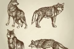 4款手绘野生狼矢量梦之城娱乐