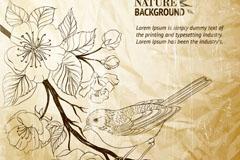 手绘褶皱纸张上的花鸟矢量图