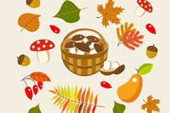 19款彩色秋季植物矢量素材