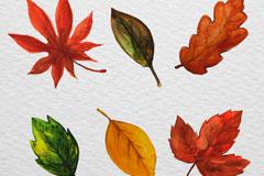 6款水彩绘叶子设计矢量图