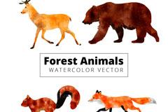 4款水彩绘动感森林动物矢量图