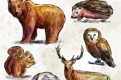 6款彩绘野生动物矢量素材
