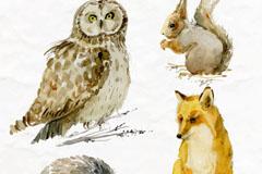 4款生动彩绘森林动物矢量素材