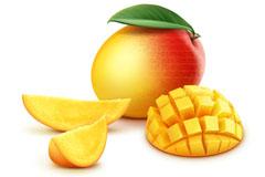 新鲜芒果设计矢量素材