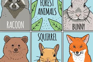 5款彩绘森林动物卡片矢量图