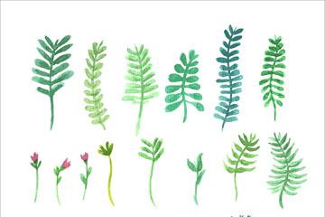 22款彩绘树叶和花卉矢量优发娱乐