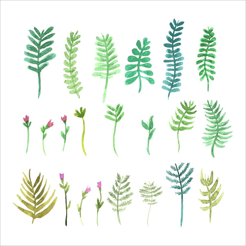 22款彩绘花卉和树叶素材矢量v彩绘临淄图片