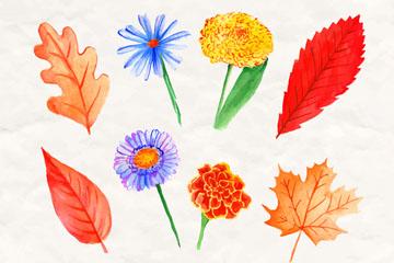 8款水彩绘鲜艳花卉和叶子矢量图