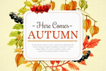 秋季叶子和浆果框架矢量素材