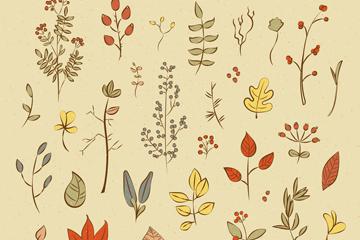 31款彩绘秋季叶子和花卉矢量图