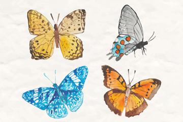 4款美丽蝴蝶设计矢量图