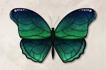 精美绿色蝴蝶设计矢量素材