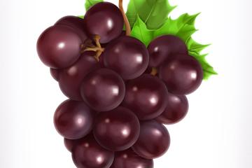 美味紫色葡萄矢量素材